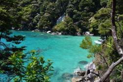 Hiking in Able Tasman National Park! The color of the water and the views here are amazing!